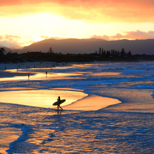 Study in Byron Bay: what are the options
